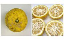 訳アリ柚子(ゆず)農薬不使用ユズ家庭用果汁用お風呂用約4kg