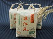 30年産 近江米コシヒカリ30kg(白米10kg×3袋)