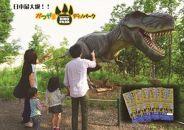 日本最大級の43頭の実物大の恐竜に会えるアミューズメント施設!かつやまディノパーク入場券セット