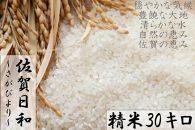 【R1年収穫米】佐賀県産『さがびより(精米30kg)』