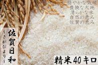 【ポイント交換専用】【R1年収穫米】佐賀県産『さがびより(精米40kg)』