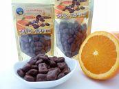 屋久島産たんかん果皮を使用したピールチョコ(プチタイプ)