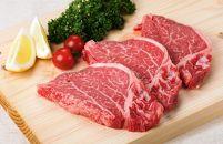 (九州産限定)国産交雑種牛ヒレ肉ステーキ肉1枚100g×3枚(ステーキソース入り)