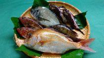 「ザ、おのみち」新鮮天然活魚セット