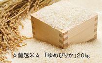 ★新米★北海道米といえば☆蘭越米☆「ゆめぴりか」20kg《木村農園》