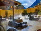 箱根外輪山を眺められる広大な庭園風露天風呂「箱根小涌園 森の湯」日帰り温泉ペアチケット
