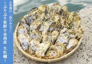 殻付き牡蠣★生食用★3kg(40粒前後)【福岡県糸島産】