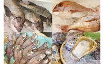 【日本海・能生漁港直送!】旬の鮮魚詰合せ