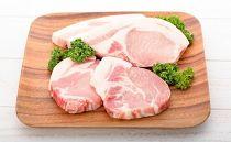 キビまる豚 ステーキ、とんかつセット