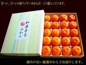 【2020年11月頃発送】和菓子なみかん 20玉