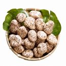 大分県産花どんこ椎茸300g原木栽培肉厚干し椎茸