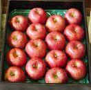BK03山形産 特秀サンふじりんご