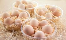 雪味鶏の卵