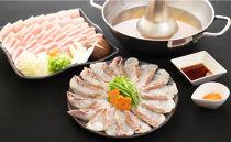 糸島天然真鯛・糸島産豚しゃぶしゃぶセット(9~10人前)