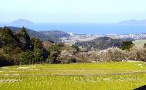 【数量限定・定期便】福吉産のお米<6回コース>ヒノヒカリ5kg