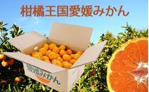 柑橘王国愛媛産温州みかん【南柑20号】約9kg~まごころ手選り手詰め