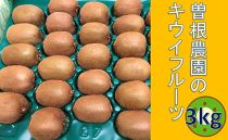 曽根農園のキウイフルーツ 3kg