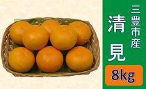 三豊市産 清見 8kg