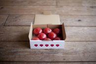 たかしまフルーティトマト糖度9度以上情熱ハート1kg箱×1