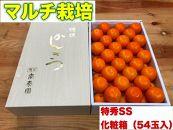 【マルチ栽培・有田みかん】化粧箱『特秀』小玉SSサイズ54玉入