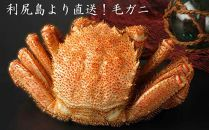 利尻島から直送【特大毛ガニ2尾セット】利尻漁業協同組合