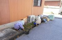 お庭の草取りサービス