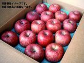 【2019年11月以降お届け】【フルーツ王国福島市からお届け】りんご「サンフジ」10kg(特秀28~36玉)