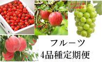 先行予約【頒布会】フルーツ定期便さくらんぼ/もも/ぶどう/りんご