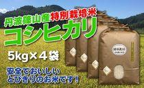 お米のおいしさ伝えたい!特別栽培米コシヒカリ5kg×4