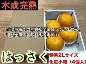 【4月まで木成り完熟させた八朔】『特秀』大玉2L×4個入/化粧小箱