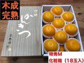 【4月まで木成り完熟させた八朔】『特秀』M×18個入(2段詰)/化粧箱