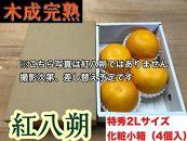 【木成完熟・紅はっさく】『特秀』大玉2L×4個入/化粧小箱