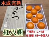 【木成完熟・紅はっさく】『特秀』L~M(8~9個入)/化粧箱