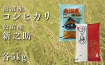 魚沼産コシヒカリ「金印」5kg+「新之助」5kg食べ比べセット
