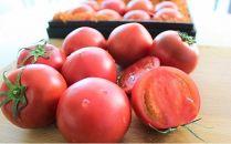 塩熟トマト KitachiROSSO 1kg(1月発送)