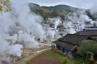 おぐたん電灯【九州電力管内のみ/約3ヶ月分】小国町産の再生可能エネルギー