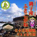 3ヶ月定期便潮風香る銚子のお米銚子産ふさこがね5kg