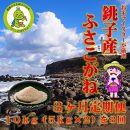 3ヶ月定期便 潮風香る銚子のお米 銚子産ふさこがね 10kg(5kg×2袋)