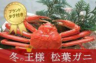 【数量限定】冬の王様 茹で松葉ガニ 中サイズ1匹