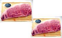 【全12回】月に一度はお肉の日!1年間毎月ステーキが届くお肉の定期便