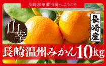 【超お買得】長崎温州みかん10kg箱ちょっと訳アリでも味に問題なし