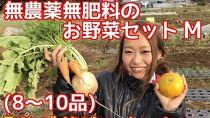 松戸市の4人家族からお届け!無農薬無肥料の旬の野菜セットM