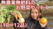 【ポイント交換専用】松戸市の4人家族からお届け!無農薬無肥料の旬の野菜セットL