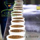 CupofExellenceTopofTopスペシャルティコーヒーCOE#22エルサルバドルロス・ピリニョス農園200g品種:パカマラ精製:ハニー【豆のまま】