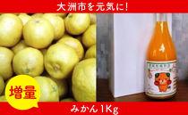 【増量】柑橘王国愛媛産柑橘【ポンカン】3kg+1kg&みかんジュース2本