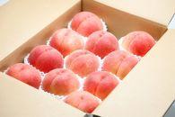 【2019年度先行受付】大人気!!美味しい品種厳選!「白桃 5kg」