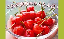 余市の砂川果樹園が贈る、感動のさくらんぼ【佐藤錦】1kgバラ詰