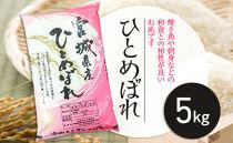 宮城県栗原産「ひとめぼれ」一等米限定 5kg