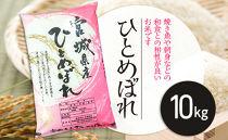宮城県栗原産「ひとめぼれ」一等米限定 10kg