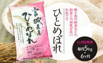 【6ヶ月定期便】宮城県栗原産「ひとめぼれ」一等米限定 毎月5kg×6ヶ月